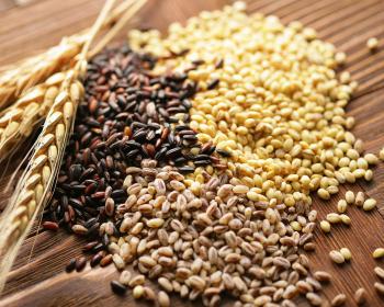 злаковые семена на столе