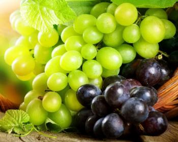 белый и синий виноград
