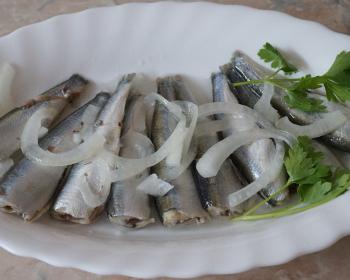 соленые тушки кильки с луком и зеленью