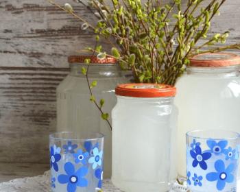 квас из березового сока в трех банках на столе, рядом два стакана с квасом, на фоне верба