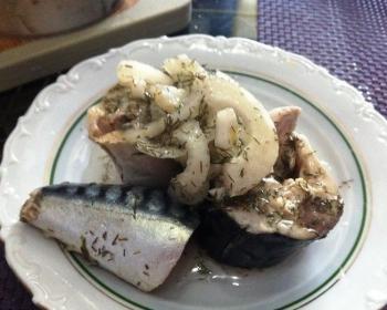 сагудай из кусочков скумбрии с нарезанным репчатым луком и зеленью на белой плоской тарелке на столе