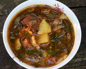 бограч венгерский с мясом, картошкой и зеленью в белой тарелке
