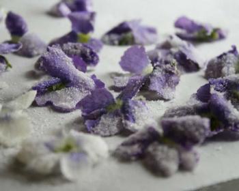 белые и фиолетовые засахаренные фиалки