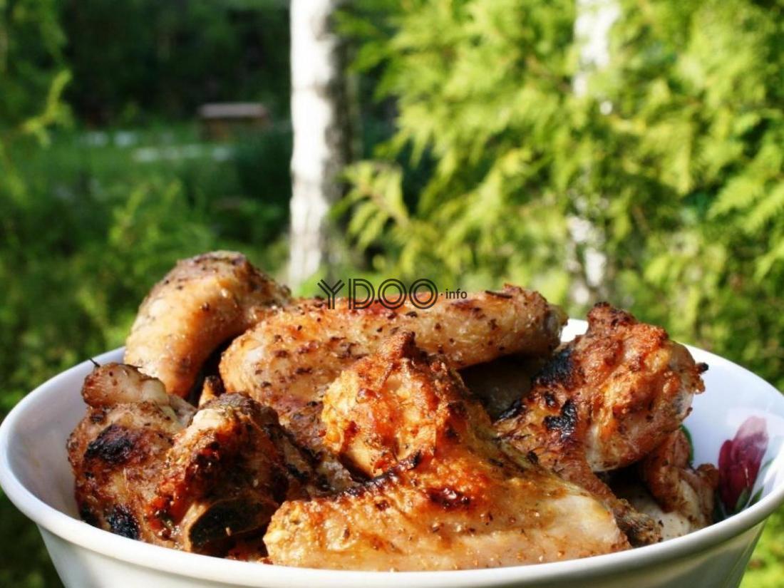 шашлык из куриных крылышек на тарелке